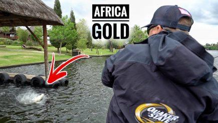 Bass Wettbewerb Südafrika 1/3 10