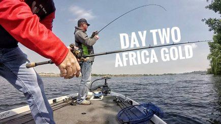 Bass Wettbewerb Südafrika 2/3 9