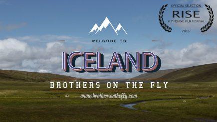 Fliegenfischen auf Island 8