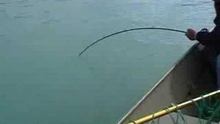 Lachsangeln in Alaska 5