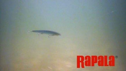 Rapala Max Rap Unterwasservideo 1