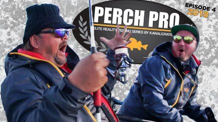 Barsch-Wettbewerb Perch Pro 2018 4/6 12