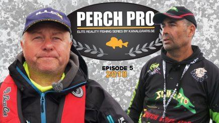 Barsch-Wettbewerb Perch Pro 2018 5/6 9