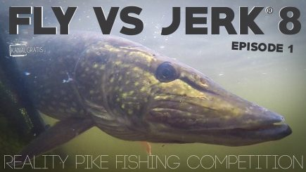 Fly vs Jerk 2018 1/6 1