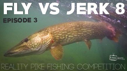 Fly vs Jerk 2017 2/6 2