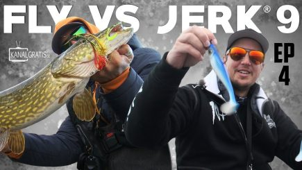 Fly vs Jerk 2018 4/6 8