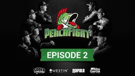Barsch-Angel-Wettbewerb Perch Fight 2018/2 9
